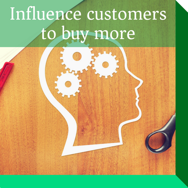 Substantially increase your marketing performance and make your brand more seductive with behavioural science and neuromarketing which are scientifically proven to influence and persuade customers to buy more.